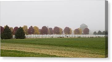 Foggy Fall Canvas Print by Joel Witmeyer