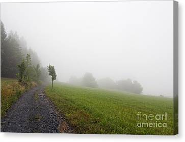 Counry Canvas Print - Foggy Landscape by Michal Boubin