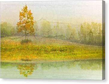 Foggy Meadow Canvas Print by Debra and Dave Vanderlaan