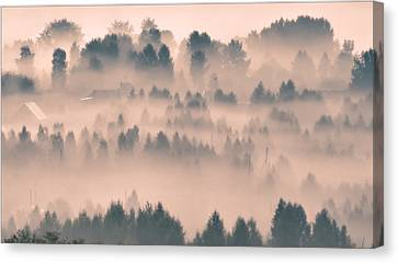 Foggy Morning 21 Canvas Print