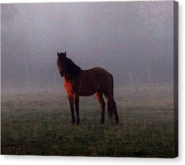 Foggy Morning Greeting Canvas Print