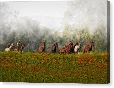 Horses Canvas Print - Foggy Morning by Susan Candelario