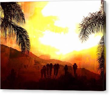 Foggy Palms Canvas Print by Sharon Soberon