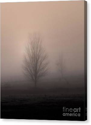 Canvas Print featuring the photograph Foggy Pasture by Deborah Smith