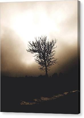 Foggy Winter Morning Canvas Print by Ann Powell