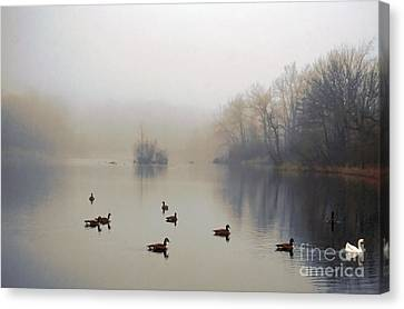 Canvas Print featuring the photograph Follow Me by Adrian LaRoque