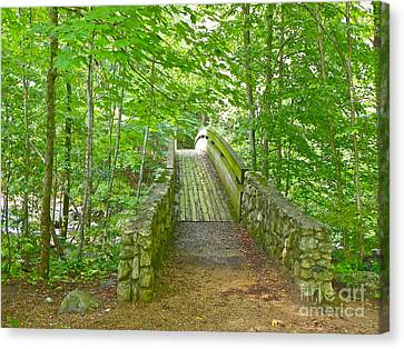 Canvas Print featuring the photograph Follow Me by Eve Spring