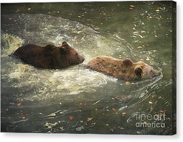 Canvas Print featuring the photograph Follow Me by Roy  McPeak