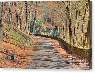 Follow The Path Canvas Print by Kathleen Struckle