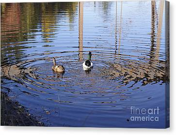 Following Theirs Path By Line Gagne Canvas Print by Line Gagne