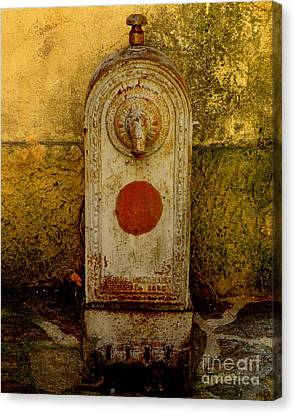 Fontaine D'eau Canvas Print by Lainie Wrightson