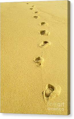 Foot Prints Canvas Print by Carlos Caetano