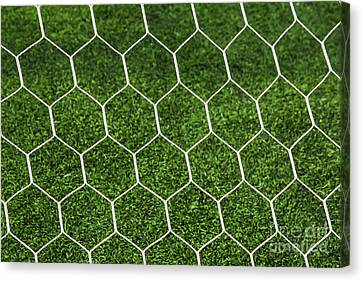 Football Goal Net Canvas Print by Mongkol Chakritthakool