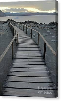 Footbridge On Volcanic Landscape Canvas Print by Sami Sarkis
