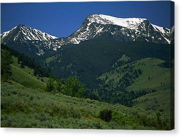 Foothills Of Tobacco Root Mountains Canvas Print by Gordon Wiltsie