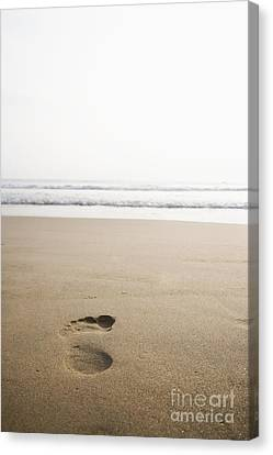 Footprint In The Sand Canvas Print by Shannon Fagan