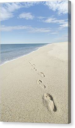 Footprints On Beach, Nantucket Canvas Print by Blue Line Pictures