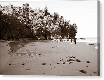 Footprints On The Beach Canvas Print by Graeme Knox