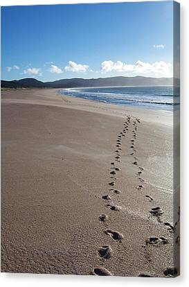 Footsteps In The Sand Canvas Print by Peter Mooyman
