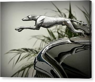 Ford Greyhound Radiator Cap Canvas Print by Karyn Robinson