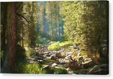 Dale Jackson Canvas Print - Forest Creek by Dale Jackson