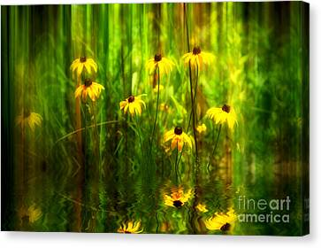 Forest Edge Canvas Print by Elaine Manley