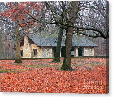 Forest Field House 1 Canvas Print by Cedric Hampton