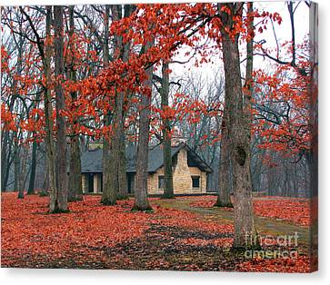 Forest Field House 2 Canvas Print