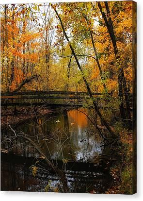 Seasons Canvas Print - Forest Foot Bridge by Scott Hovind