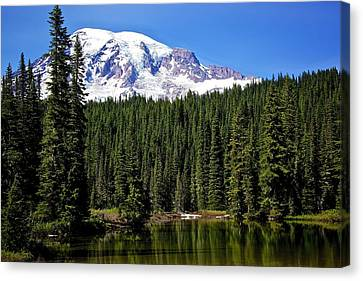 Canvas Print featuring the photograph Forest Reflections by Joe Urbz