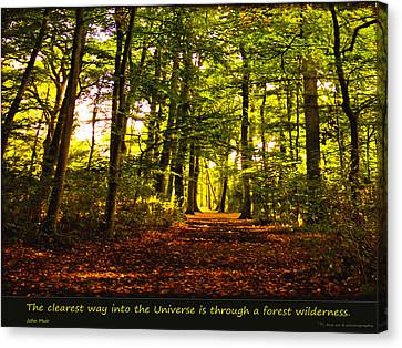 Forest Wilderness Canvas Print by Yvon van der Wijk