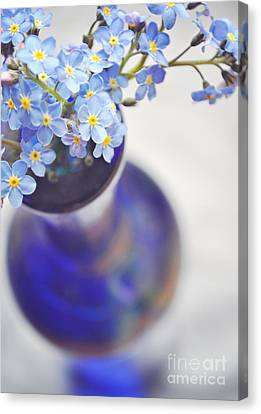 Forget Me Nots In Deep Blue Vase Canvas Print by Lyn Randle