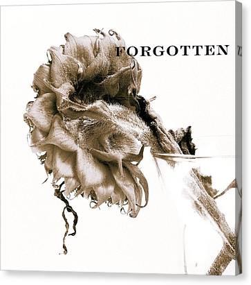 Forgotten Canvas Print