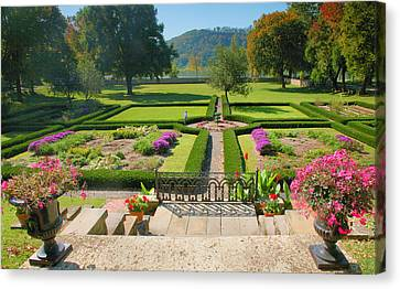 Formal Garden I Canvas Print by Steven Ainsworth