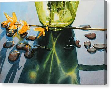 Forsythia Canvas Print by Denny Bond