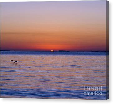Fort Sumter Sunrise Canvas Print by Al Powell Photography USA