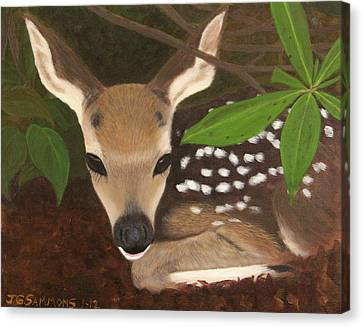 Canvas Print featuring the painting Found A Fawn by Janet Greer Sammons