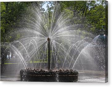 Fountain  Peterhof Palace  St Petersburg   Russia Canvas Print by Clare Bambers