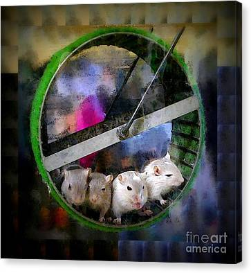 Gerbil Canvas Print - Four Baby Gerbils On Wheel by Renee Trenholm