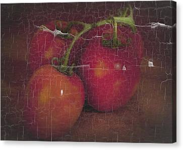 Four Tomatoes Crackle Canvas Print
