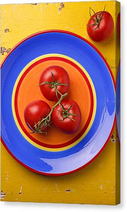 Four Tomatoes  Canvas Print by Garry Gay