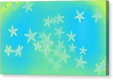 Fourth Dimension Canvas Print by Sara Koenig King