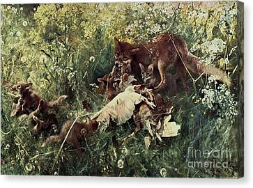 Fox Family Canvas Print by Pg Reproductions