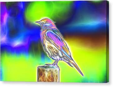Fractal - Colorful - Western Bluebird Canvas Print by James Ahn