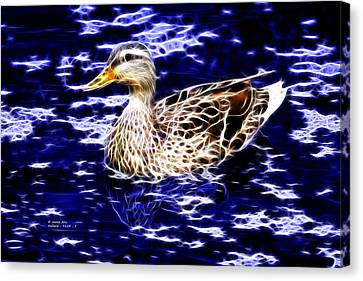 Fractal - Mallard In Pond- 9164 Canvas Print by James Ahn