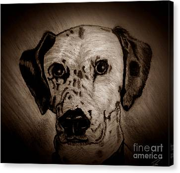 Canvas Print featuring the drawing Freckles by Ayasha Loya