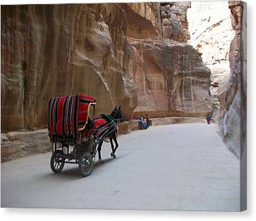 Free Ride Canvas Print by Munir Alawi
