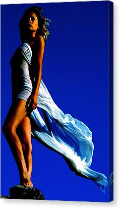 Freedom Canvas Print by Stephen Chard