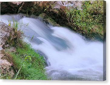 Freely Flowing Canvas Print by Kristin Elmquist