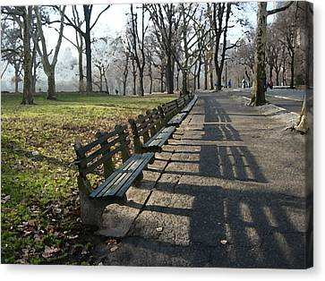 Fresco Park Benches Canvas Print by Sarah McKoy